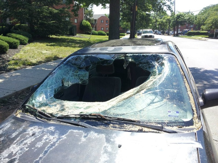 Car Windshield Repair Washington Dc