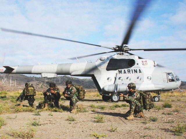 Mexican Authorities Kill Gulf Cartel, Zetas Bosses in Key Strikes
