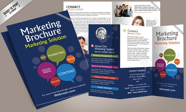 Free Corporate Bifold And Trifold Brochure Templates  Free