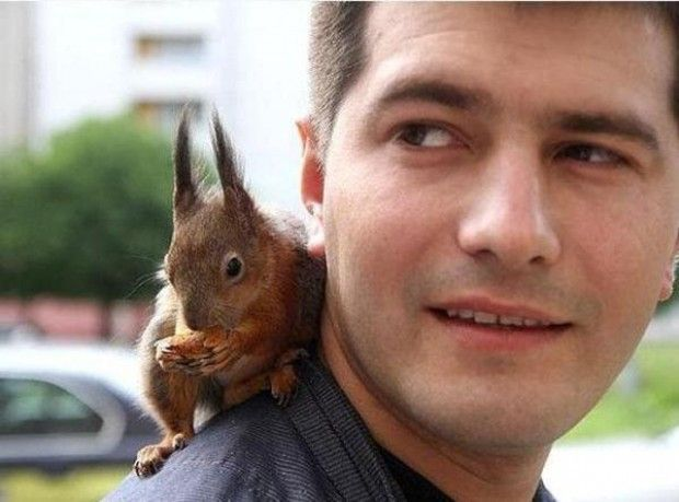 Lo ha trovato in pessime condizioni sotto un albero, da allora non si sono più lasciati. Pyotr Pankratau, soldato arruolato nell'esercito bielorusso, si è preso cura di Minsk, il piccolo scoiattolo, nutrendolo con il latte ogni quattro ore. Minsk ha recuperato peso e salute in poco tem