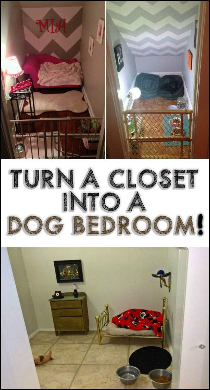 small closet turned bedroom for pet dog dog pinterest bedrooms spaces and check. Black Bedroom Furniture Sets. Home Design Ideas
