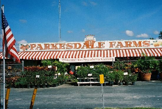 Plant City.......famous for its strawberries & its Strawberry Festival.