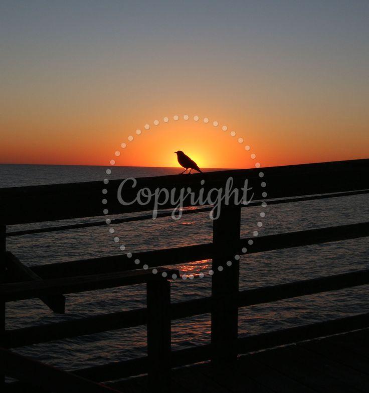 Sunrise at Sunset Beach, North Carolina. Photo credit: Joe Hiltabidel Photography www.hiltabidel.com
