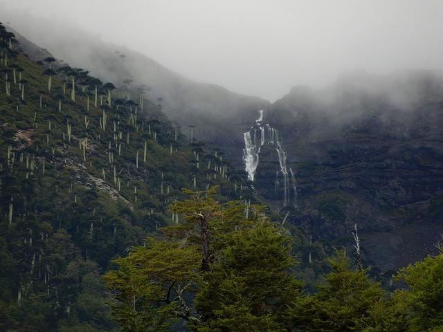 Malalcahuello, Araucania.