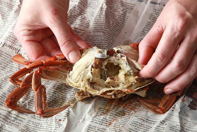 Basic Steamed Blue Crabs Recipe - Chowhound