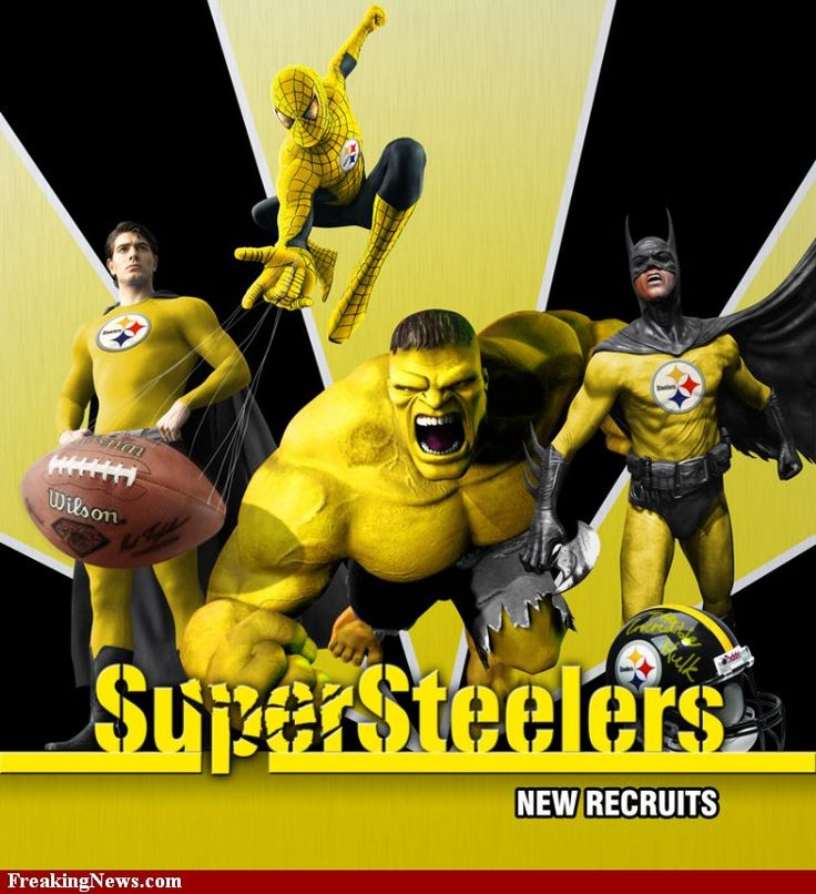 pic of steelers | Pittsburgh Steelers vs. Seattle Seahawks Pictures - Strange Pics ...
