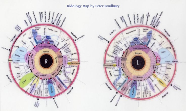 The Eye of the World/Statistical analysis