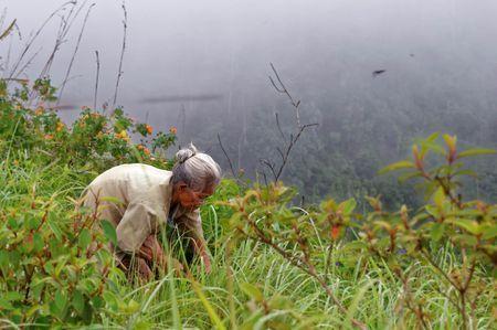 Elder Women Photo by Joko Apridinoto — National Geographic Your Shot