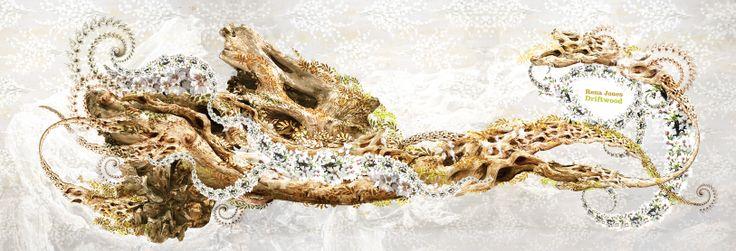 Rena Jones: Driftwood. CD Artwork for Native State records.