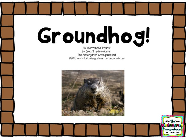 FREE groundhog informational emergent reader!  Great for groundhog day!