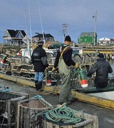 Pêcheurs au quai de Grande-Entrée, Îles de la madeleine