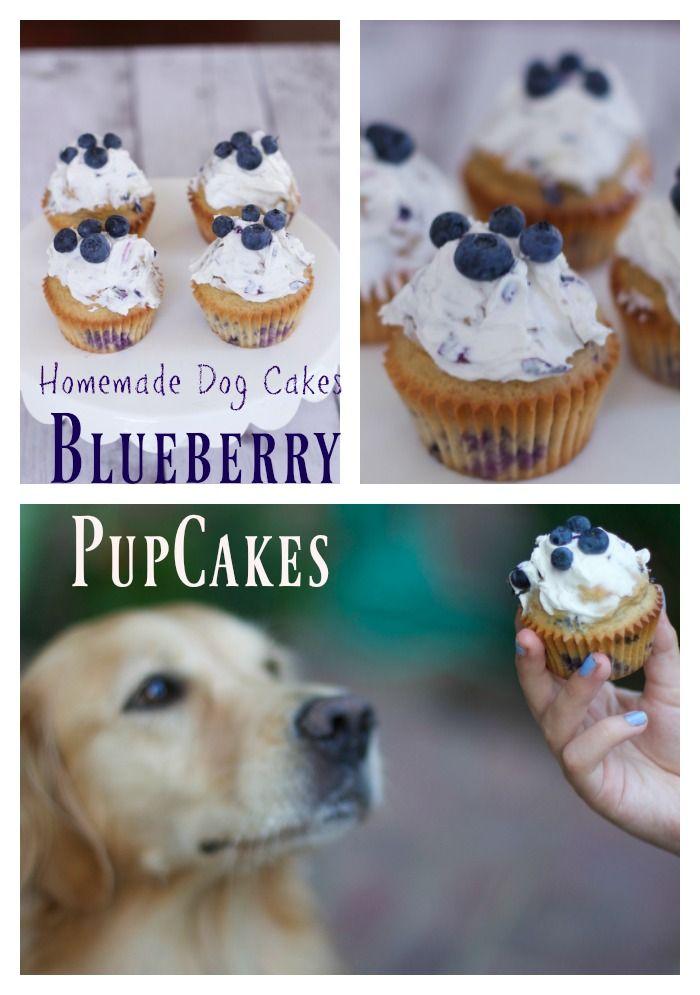 Homemade dog cake made with blueberries, cupcakes recipes #nationalDogDay  Birthday Dog cakes