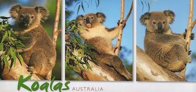 Lucas & Lilian on my mind: Postcards from Granny Angela ;) so far