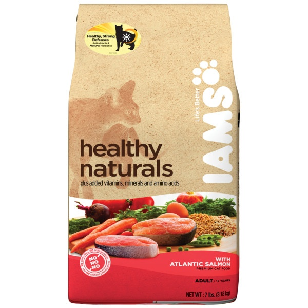 Best Cat Food For Non Active Cats