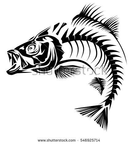 Bass Skeleth Isolated On White Perch Fish Black Logo