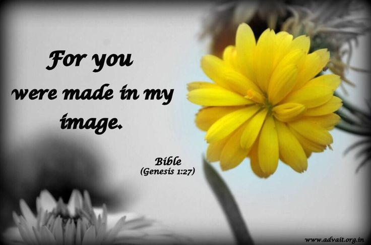 For you were made in my Image. ~Bible #ShriPrashant #Advait #bible #jesus #god #image #sould #love #made Read at:- prashantadvait.com Watch at:- www.youtube.com/c/ShriPrashant Website:- www.advait.org.in Facebook:- www.facebook.com/prashant.advait LinkedIn:- www.linkedin.com/in/prashantadvait Twitter:- https://twitter.com/Prashant_Advait