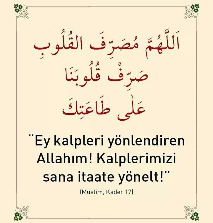 #Allah #kalp #yol #itaat #yönlen #dua #amin #hadis #islam #müslüman #türkiye #istanbul #rize #trabzon #eyüp #yeşil #ilmisuffa