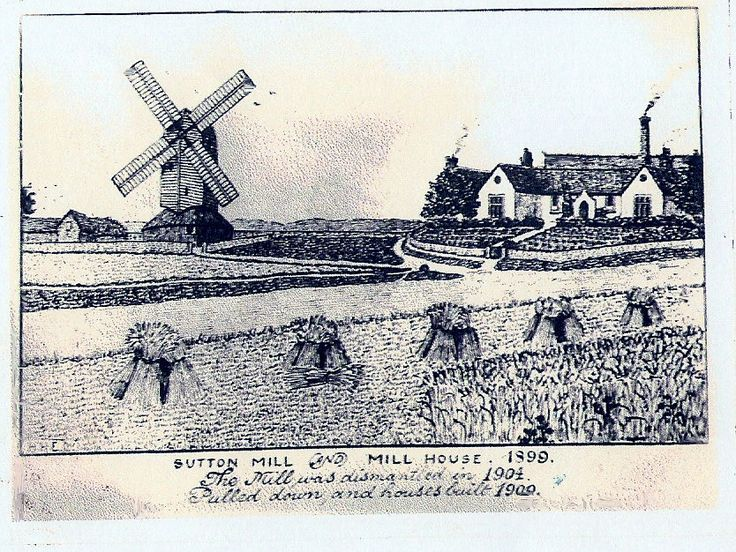 This is a drawn picture I have of Sutton Windmill and Mill House 1899 which at the time was the home of my grandparents Albert & Mary French ( Mill House is still there on the corner of Milldown Road and Sutton Road )