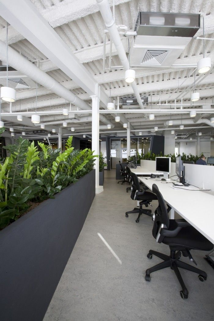 The New IPONWEB Moscow Offices #office_plants #house_plants #indoor_plants #houseplants office plants, house plants, indoor plants, houseplants