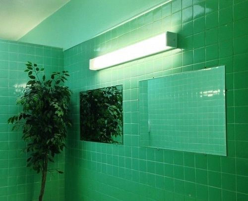 Aesthetic Green Grid Grunge Light Mirror Plants Room