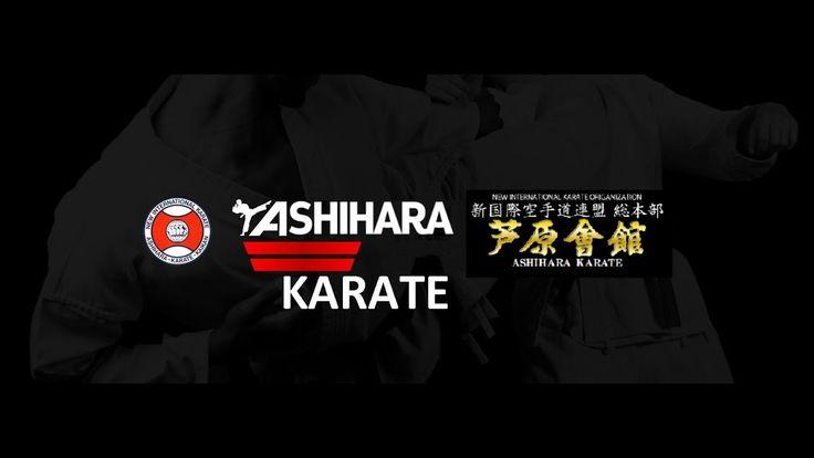 Ashihara Karate Sabaki учебный