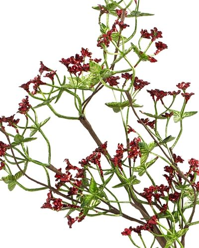 Red and Green Floral Spray | Balsam Hill #MyBalsamHillHome ...