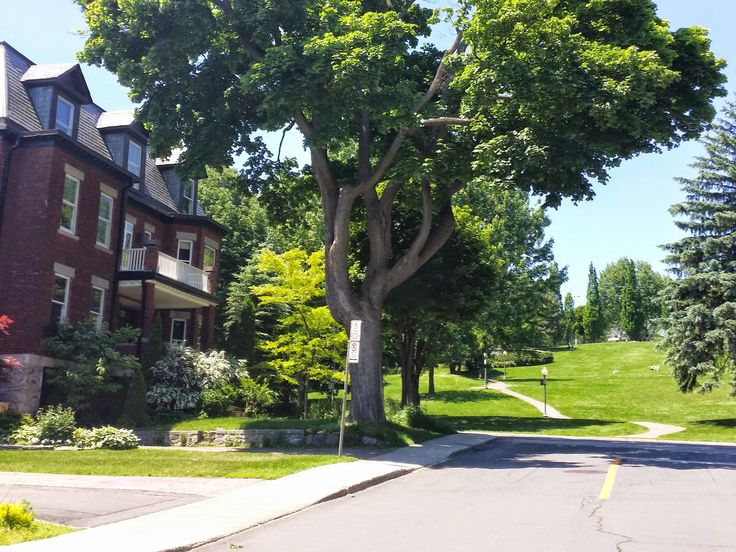 Westmount - charming homes with loads of character and lovely parks.