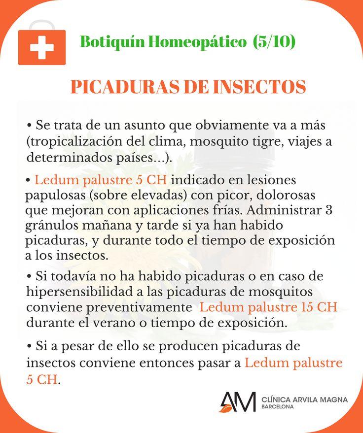 Consejos del Dr. Víctor Oliveras para paliar las molestias ocasionadas por picaduras. Por si las moscas... ;-)