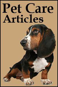 Las Vegas Medical Pet Care  --  good articles on pet health and treatment.