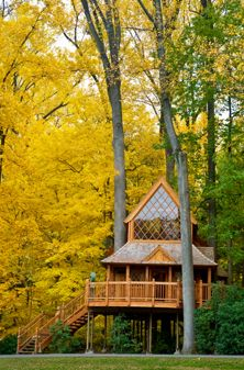 Autumn's Colors - What's in Bloom - Plan Your Visit - Longwood Gardens
