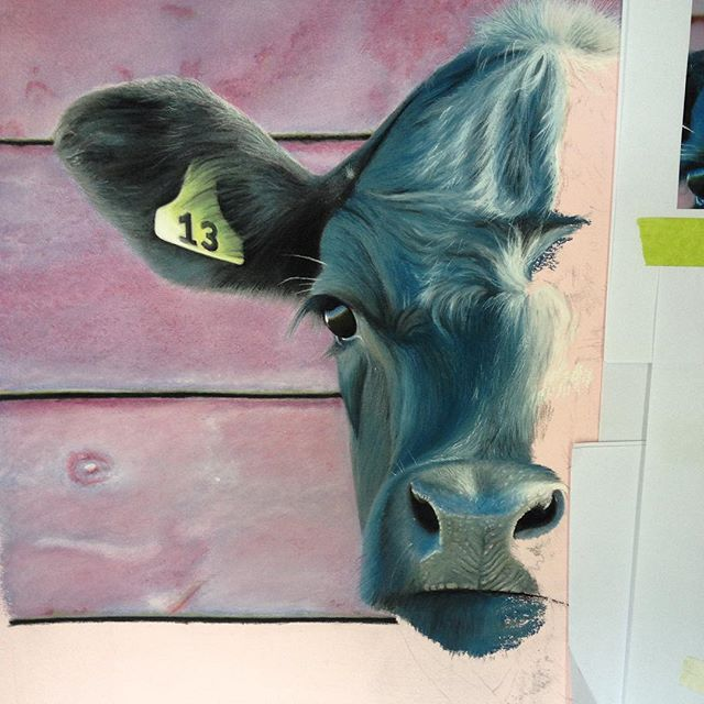 Been working on this guy's #nose today so his head is nearly half finished #pastelpainting #painting #sketch #drawing #pastel #steer #sketch #cow #cows #farmanimals #ear #eye #tag #photorealism #photorealistic #hyperrealism #hyperrealistic #realism #realistic #thirteen #luckyforsome #livestock #michaelfreeman #kiwimatador #art #artist #newzealand #pastelartist #pastelartists