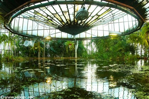 Inside of old dome greenhouse in Kiev (academy of science). So cool