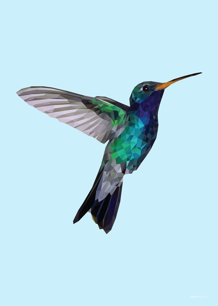 Low Poly Blue Hummingbird