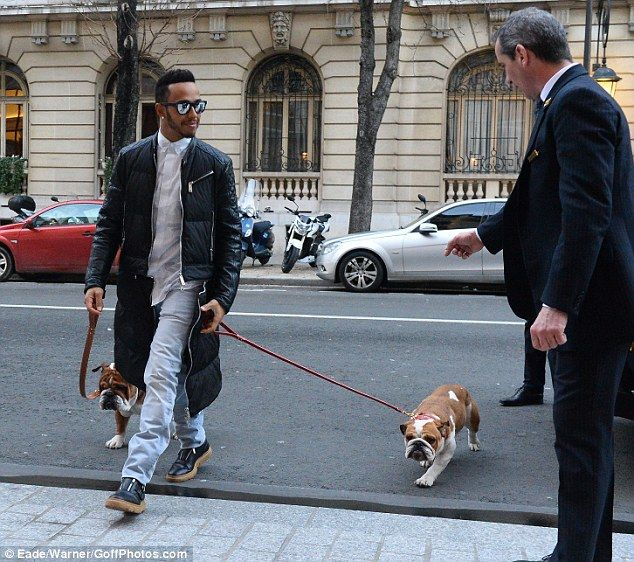 Coming through: Lewis smiled as he journeyed along with the two adorable pooches