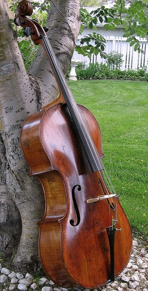 """Cello outdoors with a tree _ / Music there,  a-waiting me."" -DianaDee Osborne. I confess: I've been praying to be less materialistic, but this gorgeous photo in summer's green lawn grassy garden draws me to want to set aside my guitars and electric basses for awhile to run my hands along a new fretboard. -DdO:) - http://www.pinterest.com/DianaDeeOsborne/instruments-for-joy/ - Pin via bghahn"