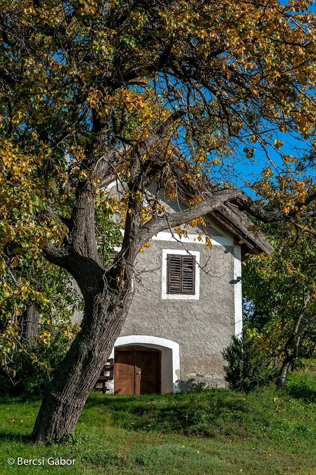 Szentbékkálla - helyreállításért felelős tervező: Mérmű Építész Stúdió