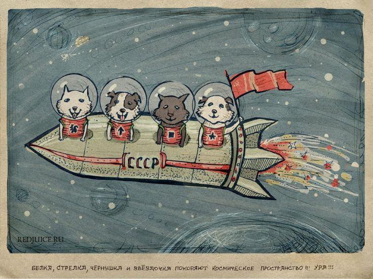 Белка, Стрелка, Чернушка и Звёздочка покоряют космическое пространство. Ура!