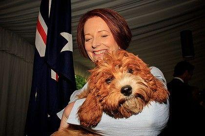 Julia Gillard and her dog Reuben.