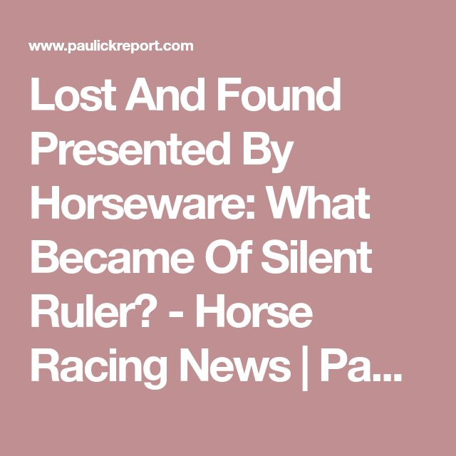 Lost And Found Presented By Horseware: What Became Of Silent Ruler? - Horse Racing News | Paulick Report