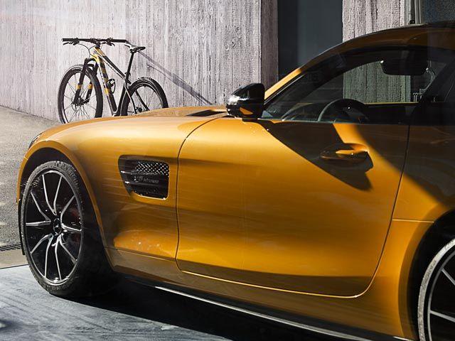 ROTWILD GT S