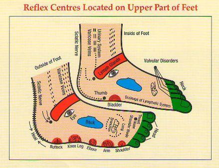 Reflexology Chart of the Foot - Foot Reflexology Chart