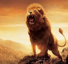 Resultado de imagem para leão rugindo png