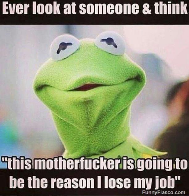 Reason I Lose My Job Work Humor Work Memes Workplace Humor