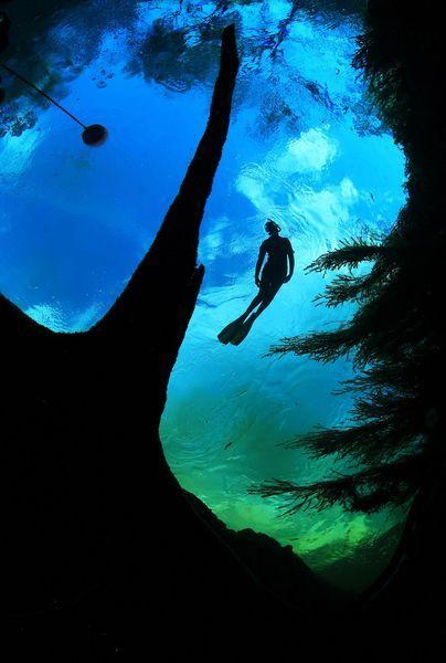 Super fotky sveta pod vodou