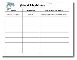 Classroom Freebies: Animal Adaptations Chart
