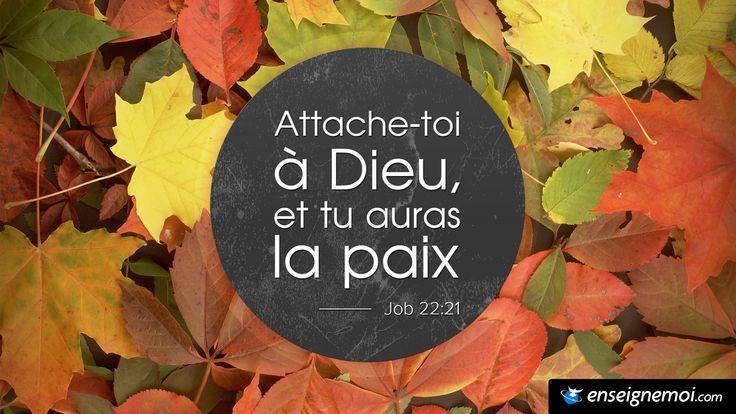 Job 22:21