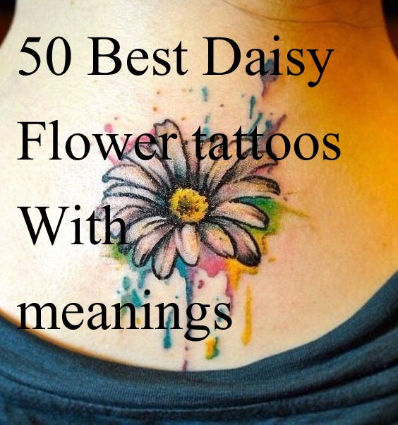 Daisy tattoos, daisy flower tattoo designs for girls and women, daisy flower tattoos with meanings, daisy flower tattoo ideas for women with meaning,