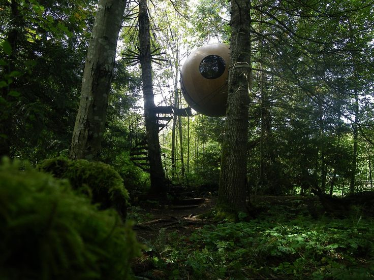 costruzione-sferica-tra-gli-alberi