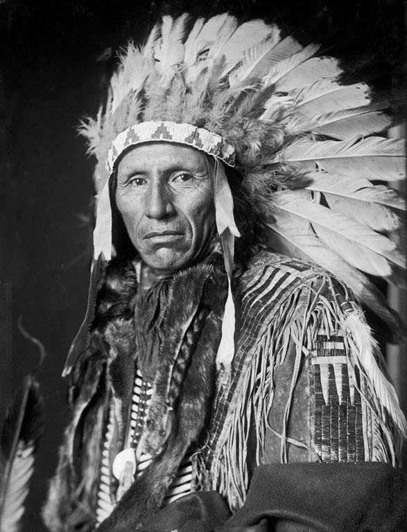 Eagle Dog, a Yankton Sioux man.  Uncredited, 1908.