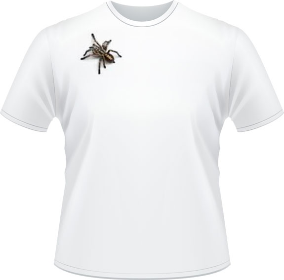 L'araignée - Don de Rouge, T-shirts pour la cause du 24h de Tremblant - 25$
